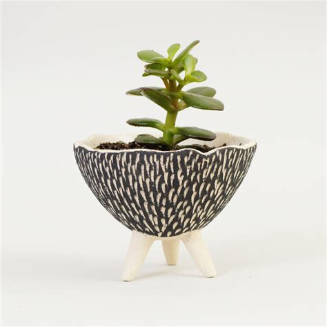 black and white pottery planter textured ceramics ceramic
