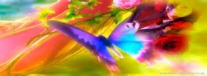 magnifique photo de couverture timeline papillon