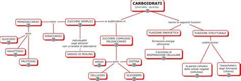 alimenti con zuccheri semplici carboidrati mappa concettuale
