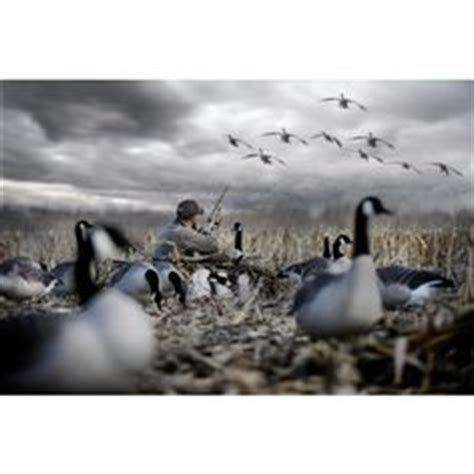 1000+ images about duck hunting, my vice on pinterest