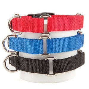 petsmart collars 17 best images about collars on wedding dogs lsu and pink collars