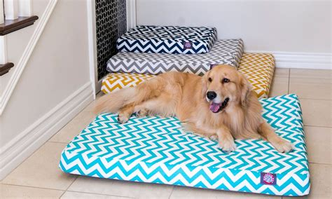overstock dog beds sofa dog bed upcycled couch covers overstock com dog beds and costumes