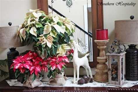 Decorating With Poinsettias by Pretty Poinsettias For Southern Hospitality