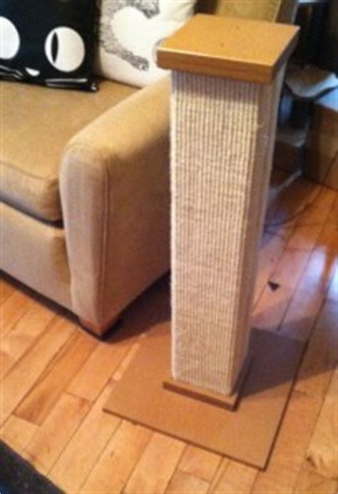 couch covers for cat scratching how to build a scratching post cats international
