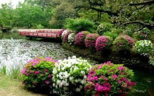 simple flower garden wallpaper