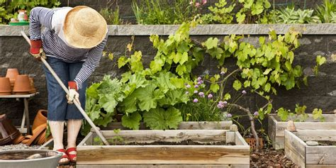 gardening tools  summer essential supplies