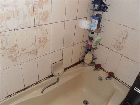 bathtub mildew bathroom mold removal how to keep water in bathtub bath
