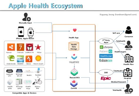 apple ecosystem apple health ecosystem
