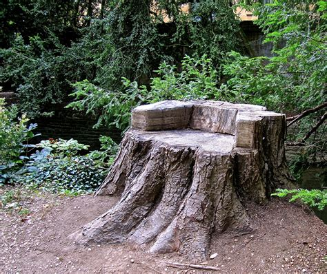 tree stump seats oxford stump seat enclos ure