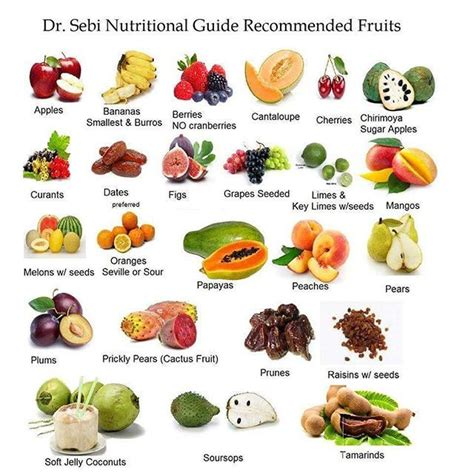 Dr Sebi Detox Diet by Best 25 Dr Sebi Nutritional Guide Ideas On Dr