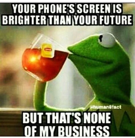 Kermit The Frog Memes - kermit tea none of my business quotes quotesgram