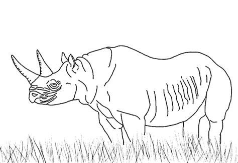 Coloriages Savane Les Animaux Imprimez Les Coloriages D Animaux Sauvages Africains L