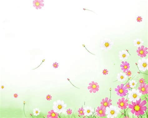 Pink Flowers Backgrounds Presnetation Ppt Backgrounds Powerpoint Flower Background