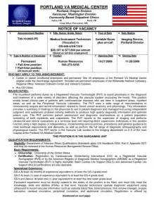 veteran resume amazing government