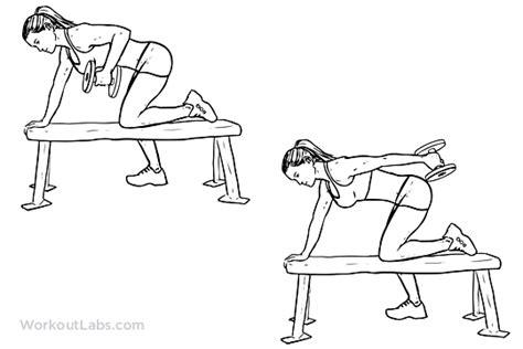 tricep kickbacks on bench tricep dumbbell kickback illustrated exercise guide workoutlabs