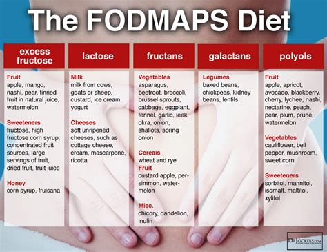 the low fodmap diet step by step a personalized plan to relieve the symptoms of ibs and other digestive disorders with more than 130 deliciously satisfying recipes books beat digestive problems with a low fodmap diet drjockers