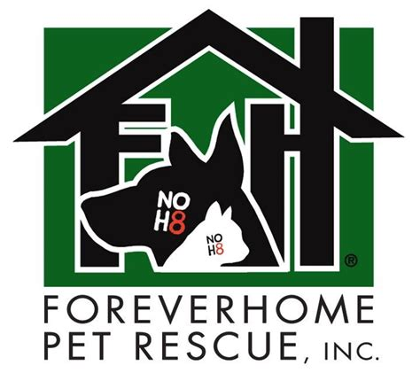 forever home pet rescue 23 photos 13 reviews