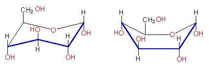 d conformation carbohydrates lon capa botany ions and small molecules sugars
