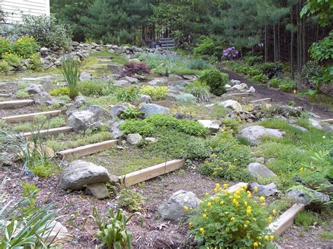 Picture Of Rock Garden The Principal Undergardener Uncovering The Rock Garden
