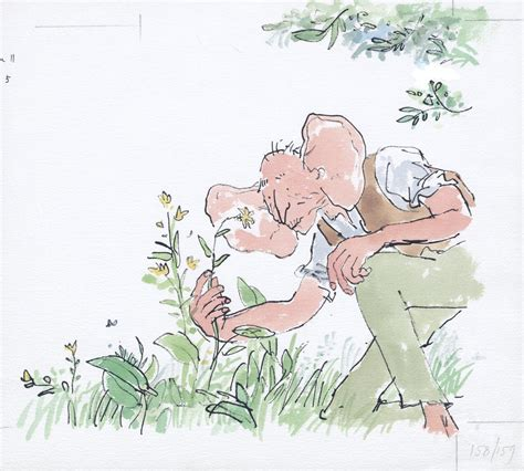 quentin blake in the the bfg quentin blake roald dahl19