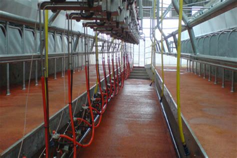 swing over pearson ireland dairy systems milking machines swing