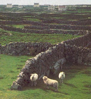 sheep stone interiors sheep stone 17 best images about rustic fencing stone walls gates on
