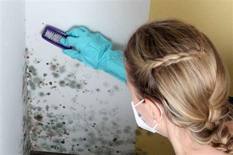 schimmel im bad entfernen 4156 schimmel entfernen putzen de
