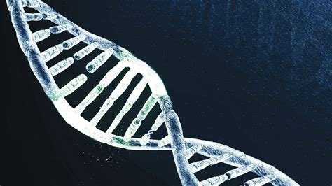 precision medicine crispr and genome engineering moving from association to biology and therapeutics advances in experimental medicine and biology books genome editing technology crispr puts the precision in