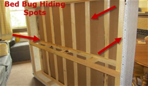 bed bug hiding places 5 spots to inspect for bed bugs in a hotel room