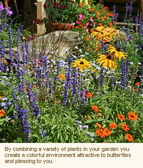 Flower Garden With Butterflies Planning Your Butterfly Garden Gardens With Wings