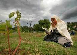 Hukum Wanita Datang Bulan Ziarah Kubur Mari Kita Belajar Bersama Hukum Ziarah Kubur Bagi Wanita