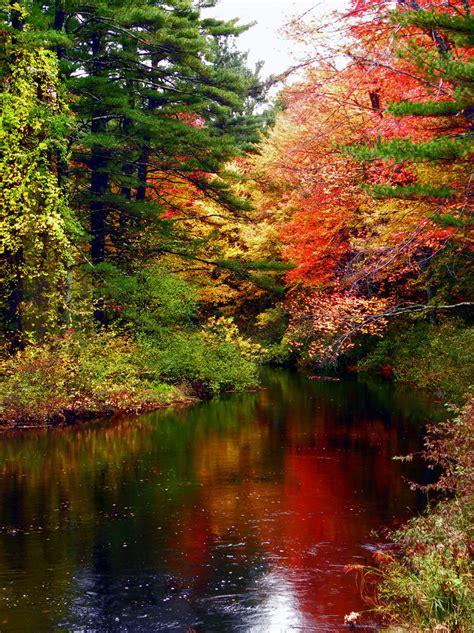 imagenes de paisajes naturales trackid sp 006 paisajes naturales viii taringa