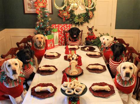 Furr S Dogs Sitting Around A Dinner Table Won
