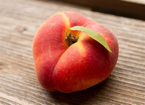 7 fruit tree fresh from zone 7 tree fruit