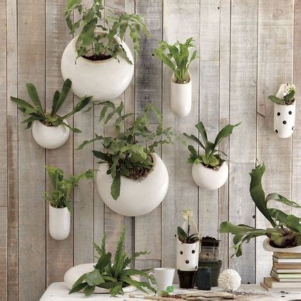 West Elm Wall Planter by Ceramic Wall Planters By West Elm V 228 Lkommen