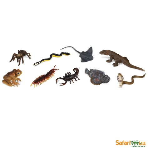 Figure Anjing Safari Ltd Toob venomous creatures toobs 174 safari ltd 174 educational