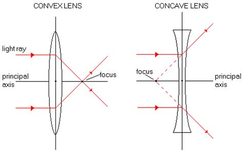 diagram of concave and convex lens light and optics qld science teachers