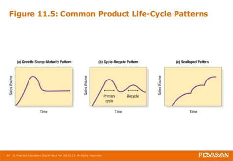 pattern of business life cycle mma6e chapter 11 final