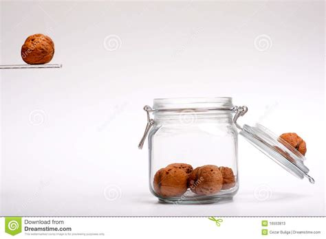 jump jar walnuts jumping in a a jar stock photos image 16553813
