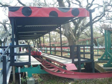 city park carousel gardens live oak ladybug