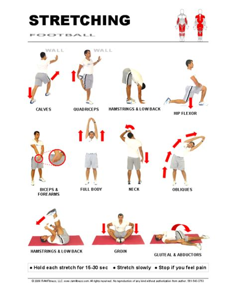printable flexibility exercises search results for exercise stretching chart printable