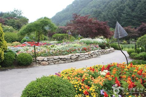 beautiful garden movie image gallery korean flower gardens
