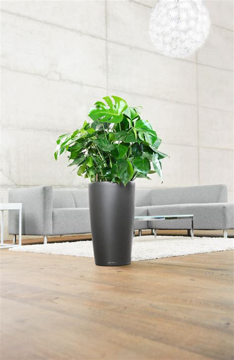 Lechuza Planters Canada by Lechuza Self Watering Planters Canada