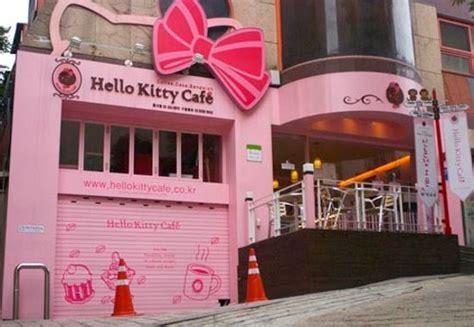 kitty cafe  kitty