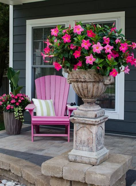 container gardening images  pinterest