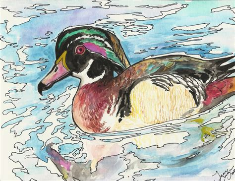 watercolor wood duck by manicmagician on deviantart wood duck watercolor by jupiterjenny on deviantart