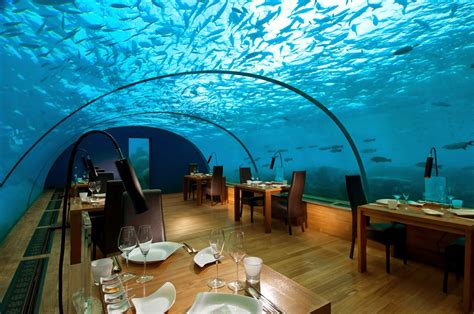 ithaa undersea restaurant passion for luxury 10 most beautiful restaurants in the