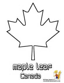 Canada Maple Leaf Outline by Maple Leaf Canada White Cliparts Co