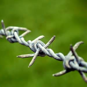 Celebrating the invention of Barbed Wire | Sciencelens Barbed
