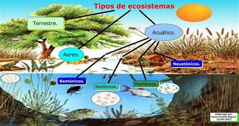 imagenes de ecosistemas naturales los gases en el ecosistema